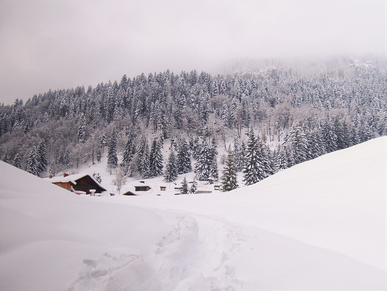 Tiefschneewanderung in Obermaiselstein